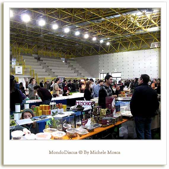 Un fotogramma della Mostra Esotica 2008 a Perugia