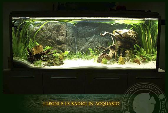 Fondo acquario con piante acquario marino tropicale for Fondo per acquario