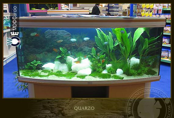 Quarzo acquario colori per dipingere sulla pelle for Acquario bianco usato