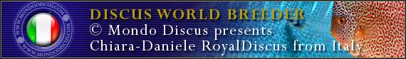 discus world breeder