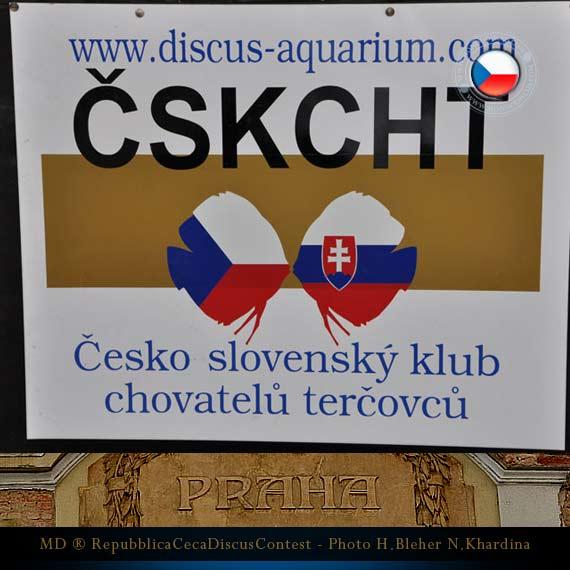 Discus Contest Repubblica Ceca