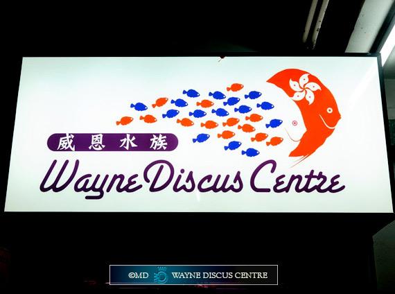Il nuovo marchio di Wayne Discus Centre