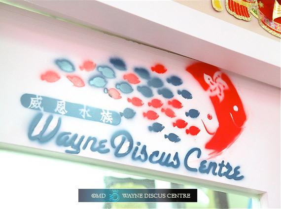 The new Brand of Wayne Discus Centre