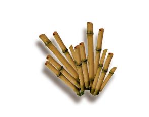 legno di bambu