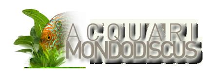 AcquariDiscus
