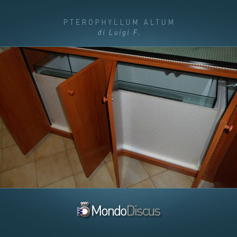 MasterArticoli-PterophyllumAltum4